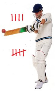 cricket player and tallies