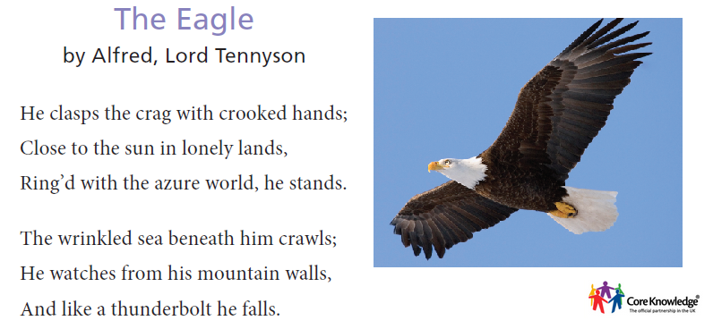 the eagle alfred lord tennyson essay Tennyson's poetry alfred lord tennyson table of contents study questions & essay topics lord of the flies as told in a series of texts.