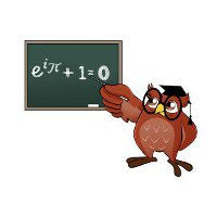 mathematics owl
